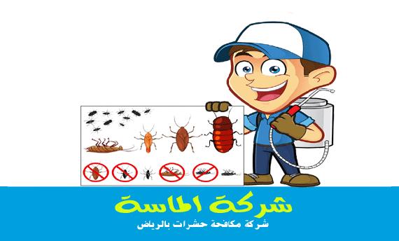 شركة رش مبيدات بالرياض بارخص اسعار مكافحة الحشرات بالرياض