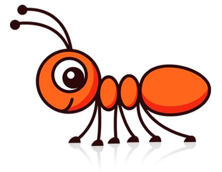 شركة مكافحة النمل الابيض برابغ رخيصه