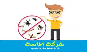 شركة مكافحة حشرات بالجموم