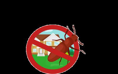 طرق مكافحة الصراصير في المنزل