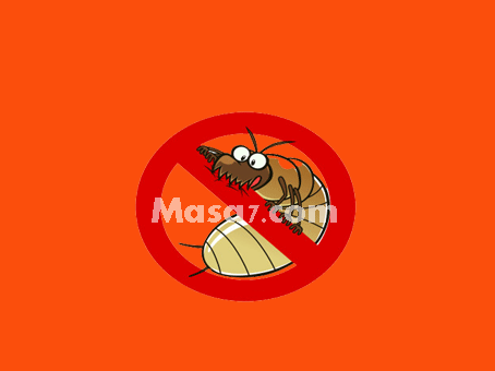 مكافحة النمل بمكة