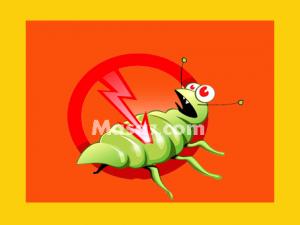 وصفة لقتل الصراصير